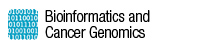 Bioinformatics and Cancer Genomics