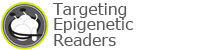 Targeting Epigenetic Readers