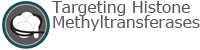 Targeting Histone Methyltransferases