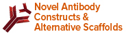 Novel Antibody Constructs and Alternative Scaffolds