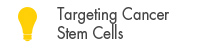 Targeting Cancer Stem Cells