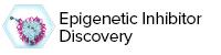 Epigenetic Inhibitor Discovery