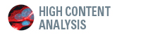 Introduction to High-Content Phenotypic Screening