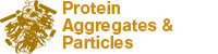 Protein Aggregates & Particles