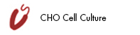 CHO Cell Culture