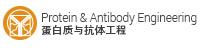 Protein & Antibody Engineering