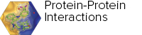 Protein-Protein Interactions