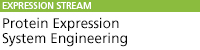 Protein Expression System Engineering